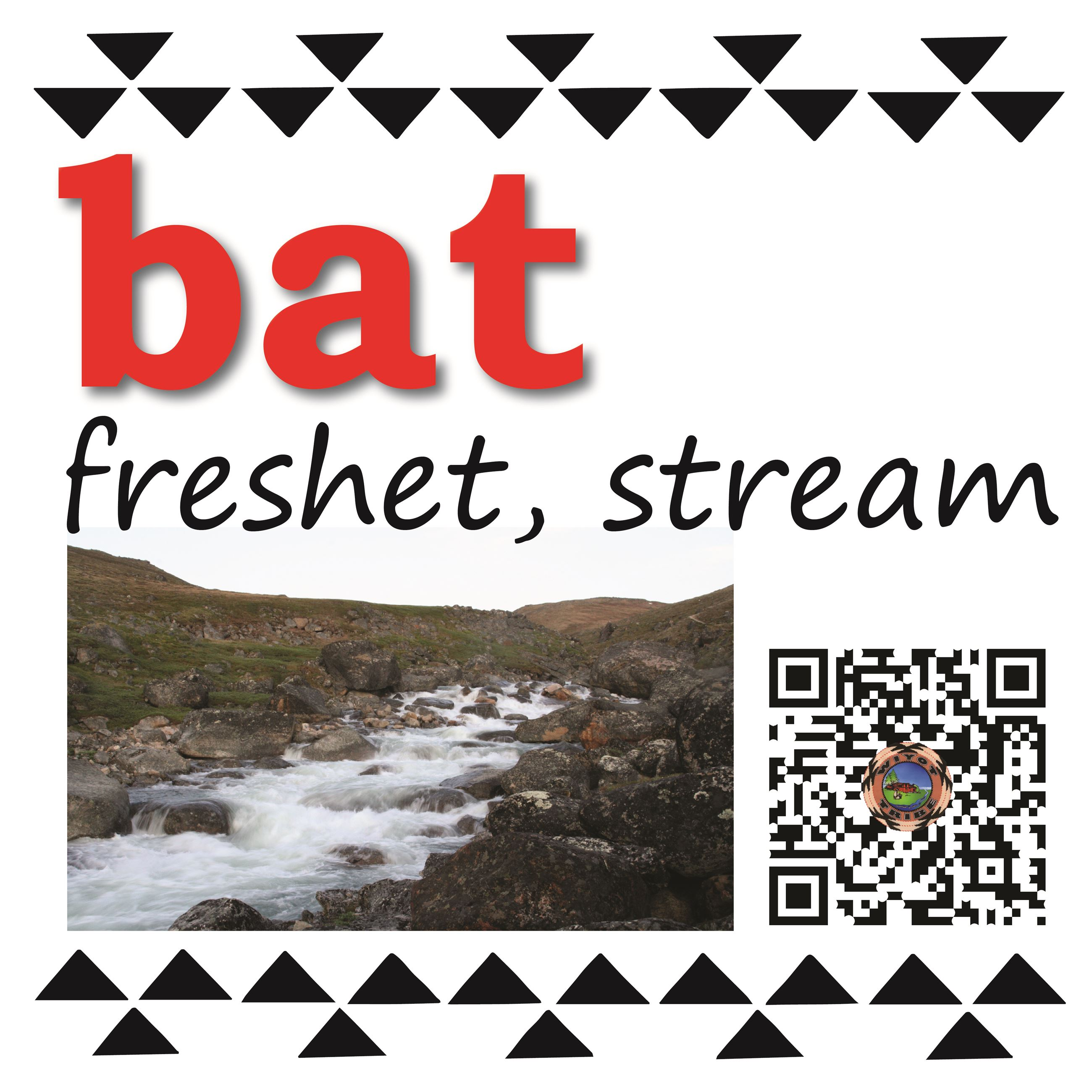 bat (freshet, stream)